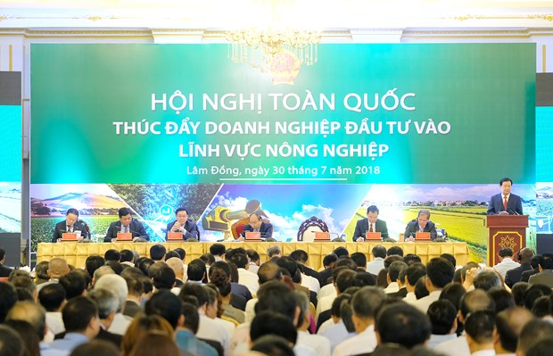 Local agriculture aims for top global 15: PM hinh anh 1