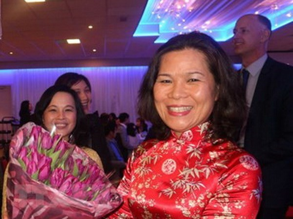 Vietnam, Netherlands hold potential for stronger cooperation hinh anh 1