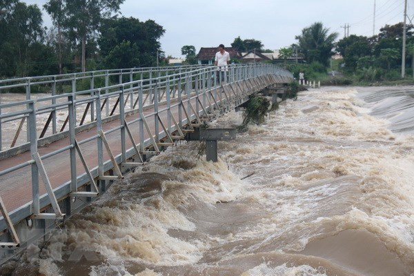 Mekong Delta asked to prepare natural disaster prevention plans hinh anh 1