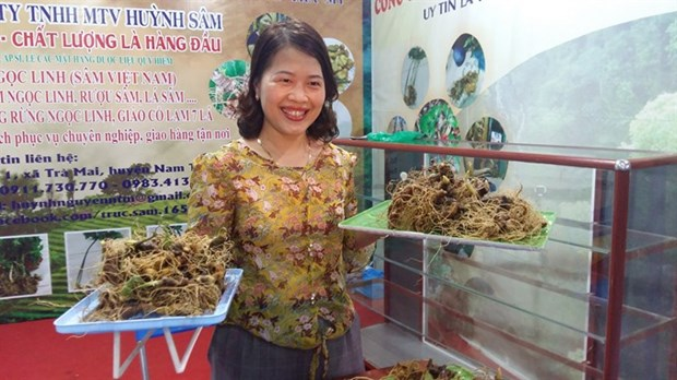 Virtual portal on Ngoc Linh ginseng tourism area launched hinh anh 1