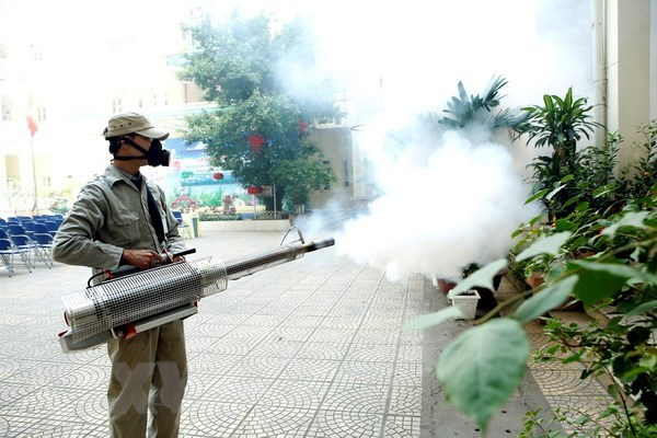 Citizens advised to apply drastic preventive measure against dengue fever hinh anh 1
