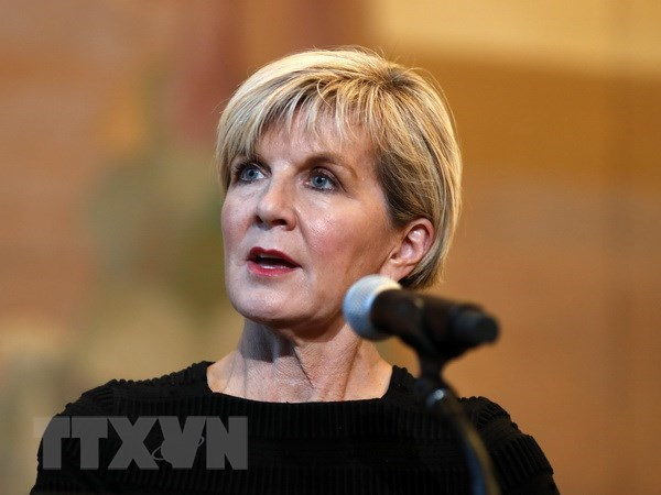 Australia pledges to back Malaysia's reformation process hinh anh 1