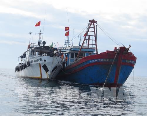 Vietnam pushes drastic measures to fight IUU fishing hinh anh 1