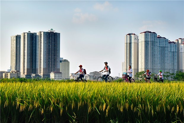 Photos on Hanoi's suburban life on display hinh anh 1
