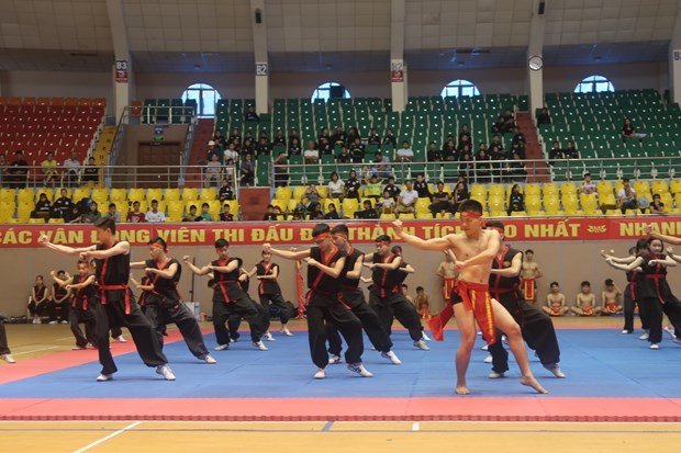 Martial arts exchange between Vietnamese, French provinces hinh anh 1