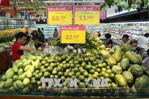 HCM aims to promote retail sector as key economic contributor hinh anh 1
