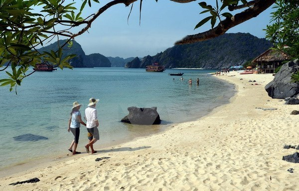 Hai Phong: Modern infrastructure deemed prerequisite for tourism growth hinh anh 1