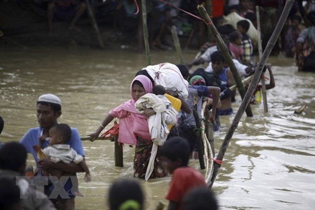 Myanmar, Japan FMs discuss Rohingya-involved crisis hinh anh 1