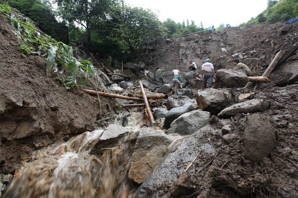 Provinces asked to actively cope with low pressure hinh anh 1