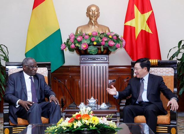 Vietnam, Guinea seek to expand cooperation hinh anh 1