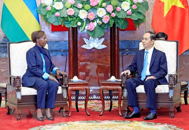 Vietnam looks to deepen relations with Rwanda, Guinea hinh anh 1