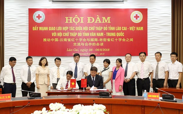 Vietnamese, Chinese provinces cooperate in humanitarian activities hinh anh 1
