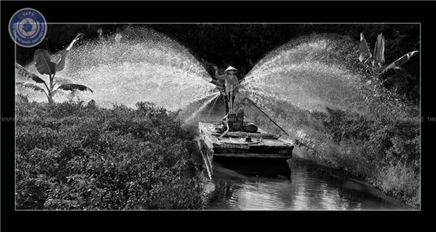 Photography festival highlights beauty of Mekong Delta hinh anh 2
