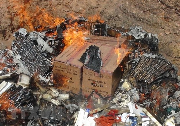 Lang Son destroys counterfeit goods hinh anh 1