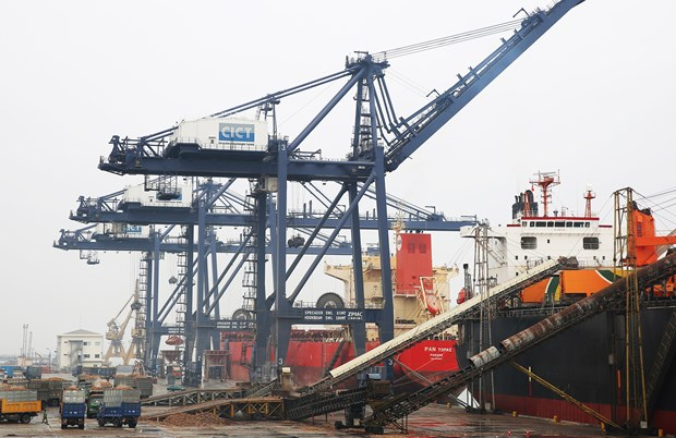 Automatic customs management system applied at Cai Lan Port hinh anh 1