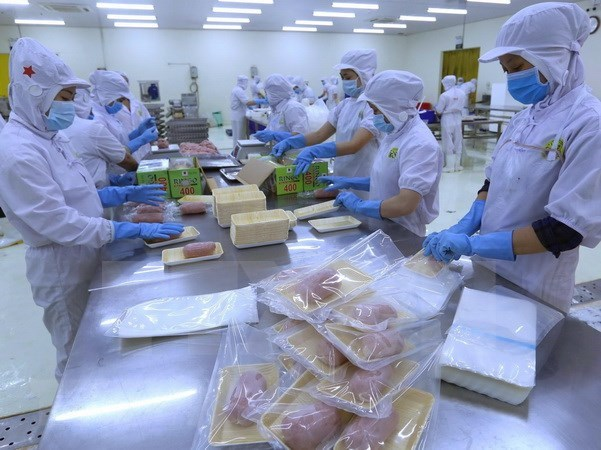 Vietnam's growth potential is strong: Moody's hinh anh 1