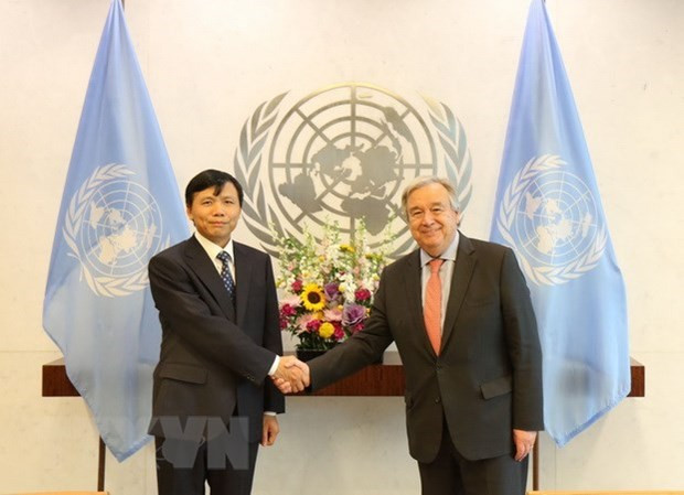 Vietnam active at United Nations' forums hinh anh 1