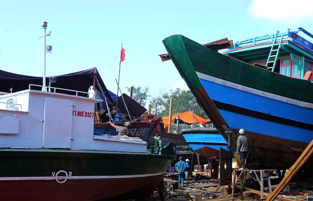 Thua Thien-Hue supports offshore fishing hinh anh 1