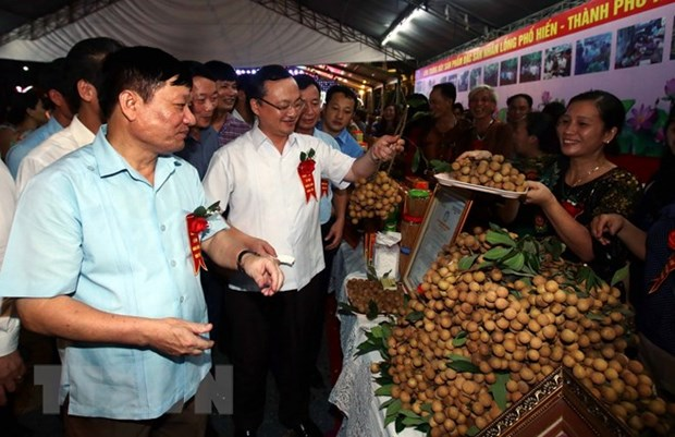 Longan Festival 2018 opens in Hung Yen province hinh anh 1