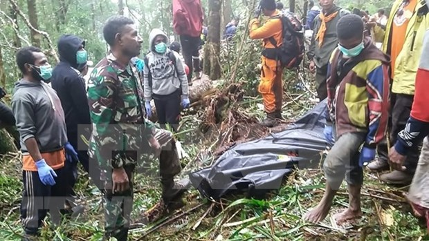 Eight killed in plane crash in Indonesia hinh anh 1