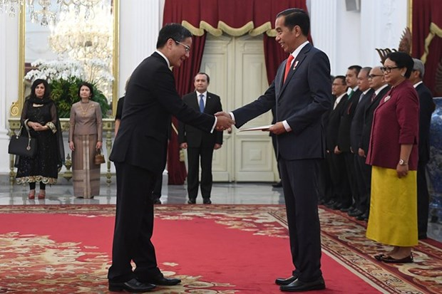 Indonesian President's Vietnam visit expected to boost ties hinh anh 1
