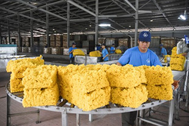 Rubber industry faces falling export price hinh anh 1