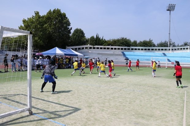 Vietnamese students gather in sport festival in RoK hinh anh 1