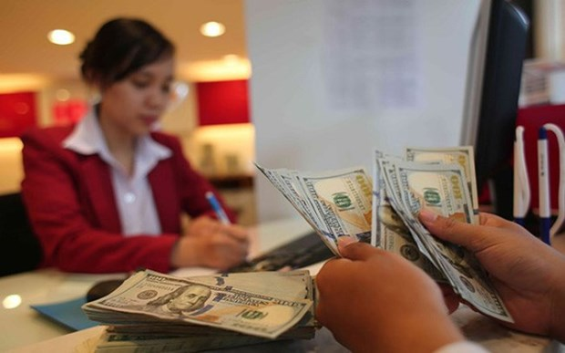 Central bank requests control on foreign currency loans hinh anh 1