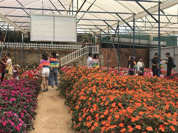 Lam Dong province develops agritourism hinh anh 2