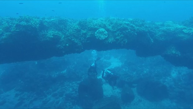Underwater stone arch draws visitors to island district hinh anh 1