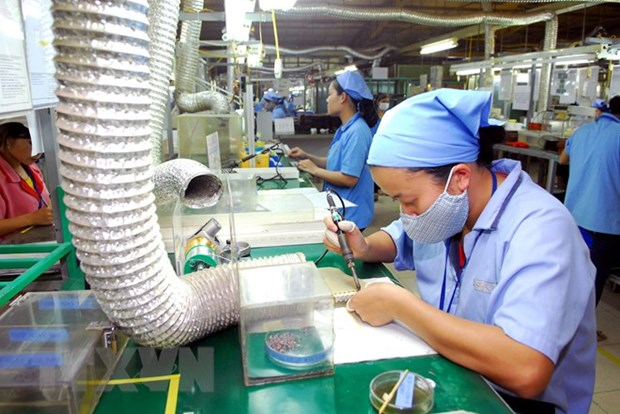 Vietnam, southern African countries share experience in developing MSMEs hinh anh 1