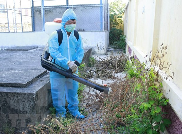 Ha Nam: Medical workers get training on effective dengue prevention hinh anh 1