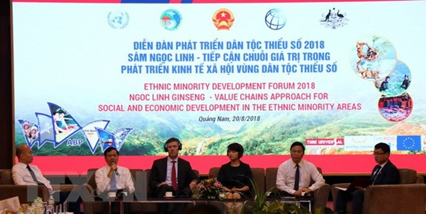 Deputy PM asked for sustainable development in ethnic minority areas hinh anh 1
