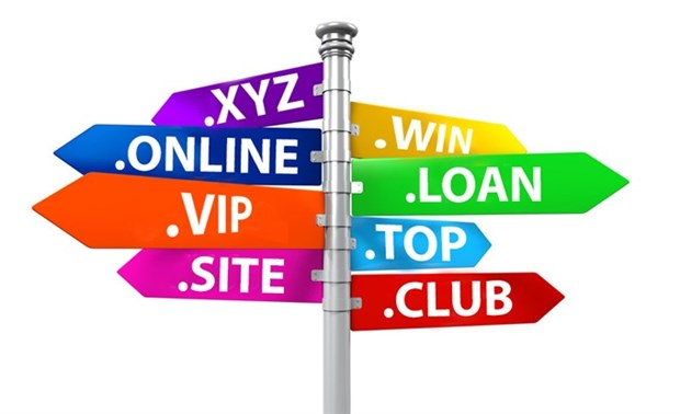 Global domain names come to Vietnam hinh anh 1
