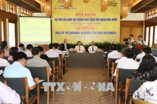 Role of NA spotlighted in State diplomacy hinh anh 1
