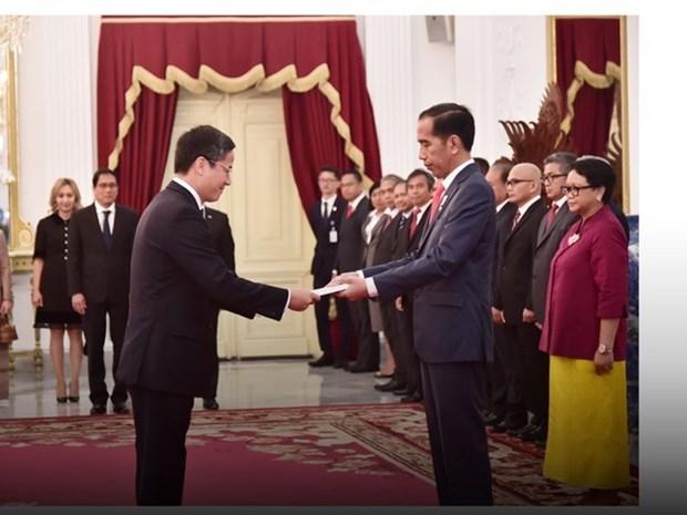 Vietnam, Indonesia look towards deeper strategic partnership: Ambassador hinh anh 1
