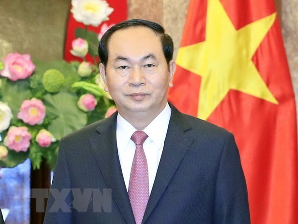 President's visit looks to boost traditional friendship with African countries hinh anh 1
