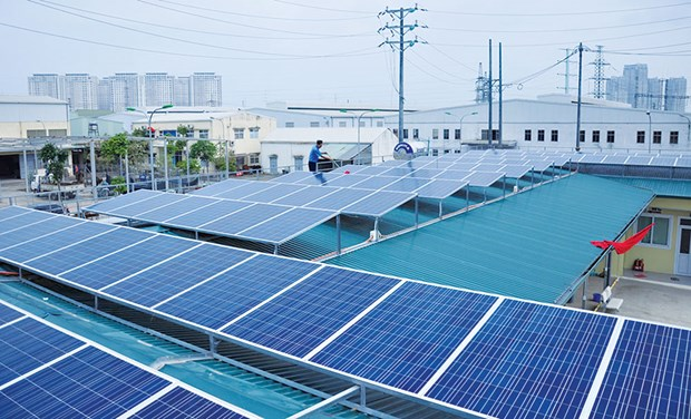 Rooftop solar panels can satisfy half of power demand: experts hinh anh 1