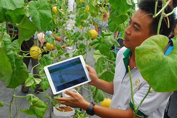 Can Tho promotes startup spirit among farmers hinh anh 1