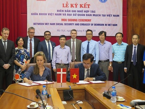 VSS, Danish Embassy ink deal on health insurance-related cooperation hinh anh 1
