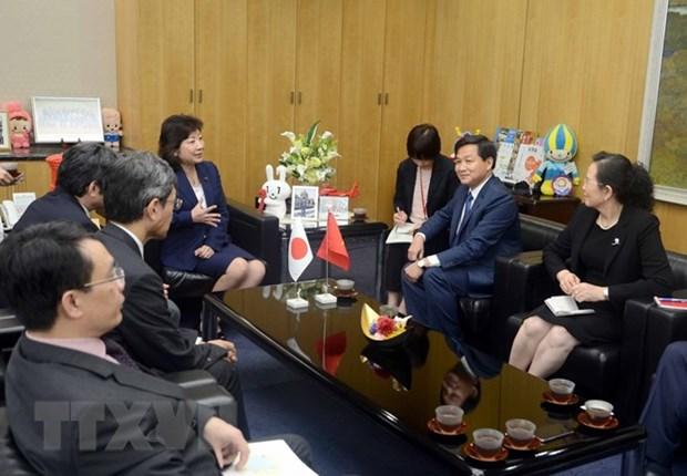 Government Inspectorate delegation visits Japan hinh anh 1
