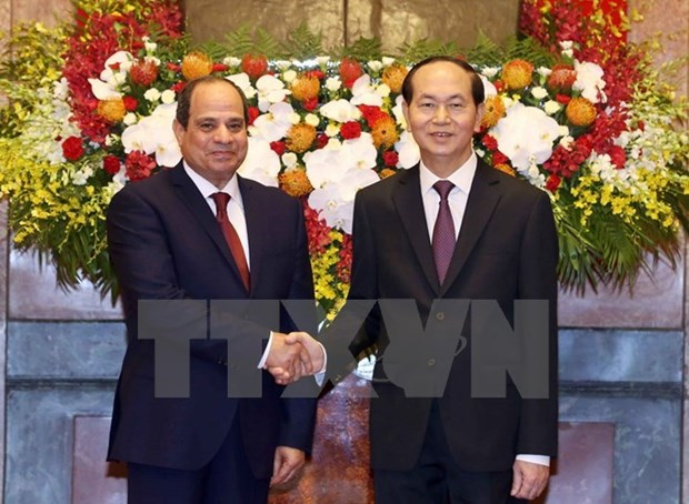 High level visits to shape basis for stronger Vietnam-Egypt ties hinh anh 1