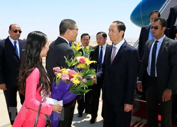 President Tran Dai Quang begins State visit to Egypt hinh anh 1