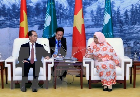 Vietnam treasures ties with African nations: President hinh anh 1