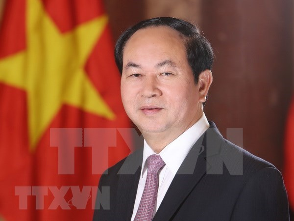 President emphasises Vietnam's desire to boost ties with Egypt hinh anh 1