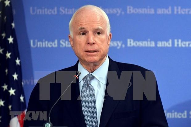Senator McCain has special position in Vietnam-US relation history: Ambassador hinh anh 1
