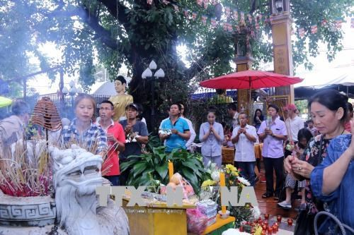 Vietnamese celebrate Buddhist Vu Lan Festival in Laos, India hinh anh 1