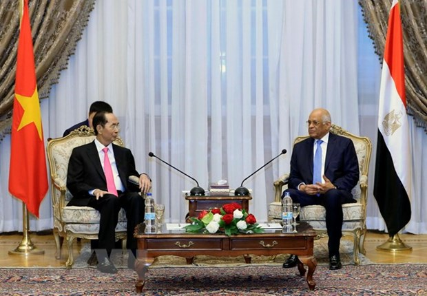 President: Vietnam maintains friendship with Egypt via different channels hinh anh 1