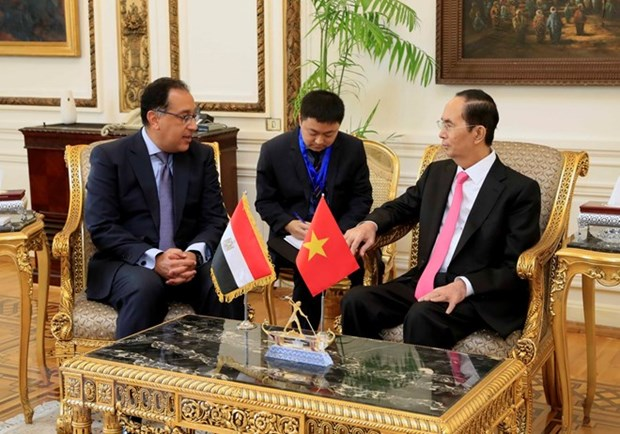 Vietnam, Egypt should bolster trade promotion: President hinh anh 1