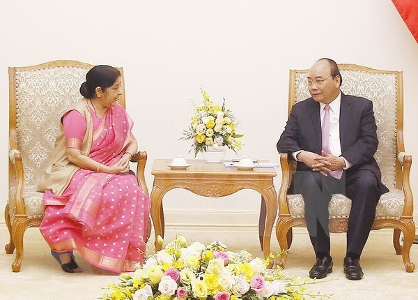 Plenty of room for expanding Vietnam – India ties: PM hinh anh 1